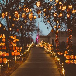 pumpkin nights utah