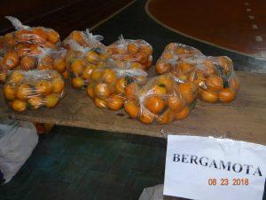 40138832_239903896721792_2212495373958643712_n-300x225 Mais uma entrega de alimentos pelo Programa de Aquisição de Alimentos-PAA