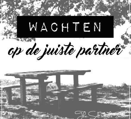 Wachten op de juiste partner, partnerkeuze