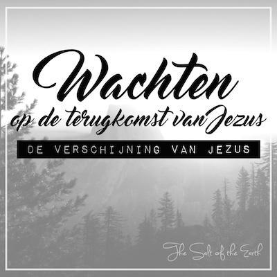 De verschijning van Jezus
