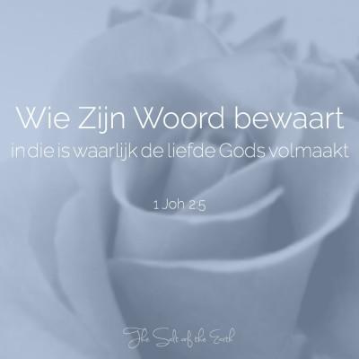 wie zijn woord bewaart in die is waarlijk de liefde Gods volmaakt