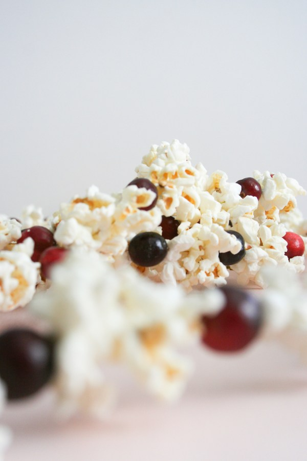 Diy -fashioned Cranberry Popcorn Garland