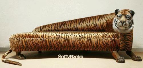 one seater sofa chair asian goregaon weird couches & sofas! : salty peaks