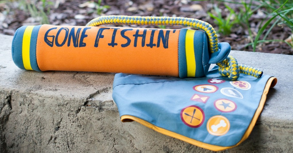 Essentials for Camping With Your Dog