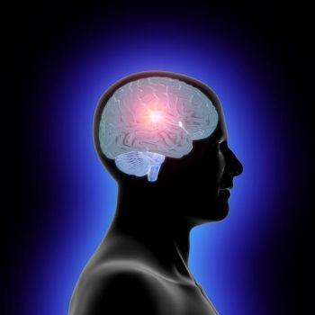 Cerebro joven y en forma