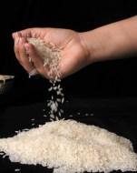 Arroz: un cereal sin alergénicos