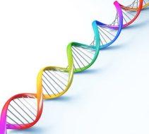 ADN utilizado para detener brote de SARM