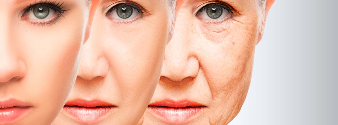 Resultado de imagen para envejecimiento