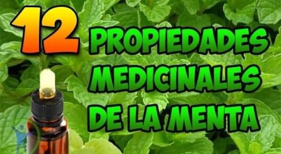 12 propiedades medicinales y beneficios de la menta