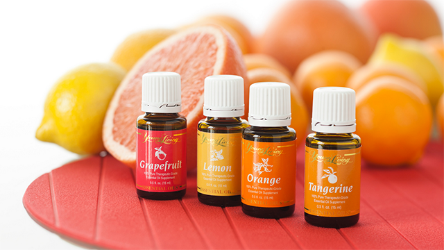 Image result for aceite esencial tangerine young living