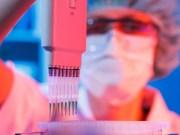 La conexión entre la genética y el cáncer de mama