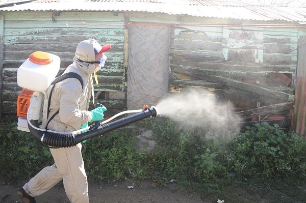 Salud Pública interviene varios sectores de Constanza por casos sospechosos de dengue