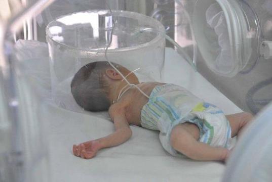 RD celebra Día del Prematuro con las mejores cifras en reducción mortalidad neonatal de los últimos años