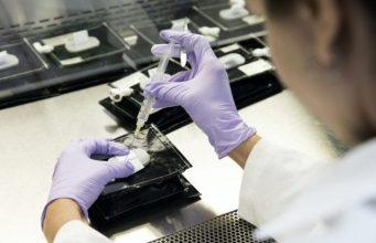 El lunes se conocerán primeros resultados de variantes Covid-19 circulan en el país