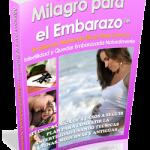 """Revisión del Libro """"Milagro Para el Embarazo"""" de Lisa Olson"""