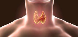 Que es y como Mejorar el Hipotiroidismo Autoinmune