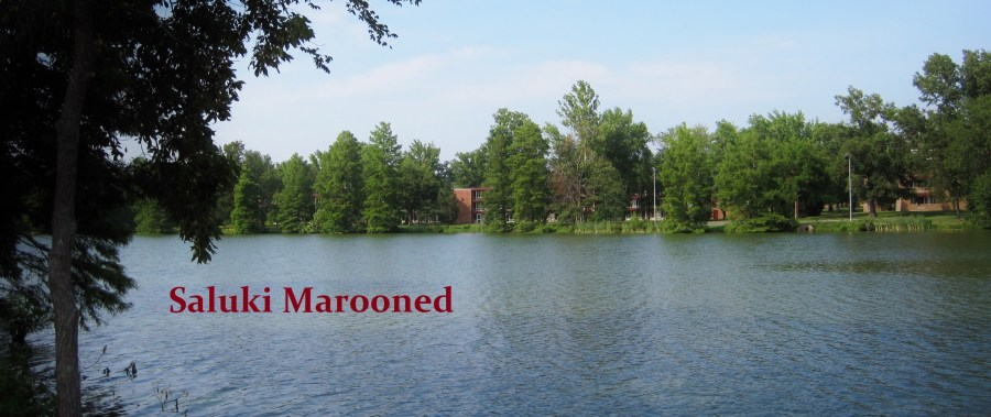 Campus Lake SIU Saluki Marooned