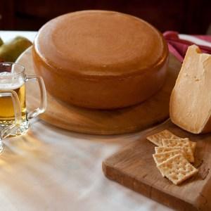 sapore di birra - formaggio stagionato