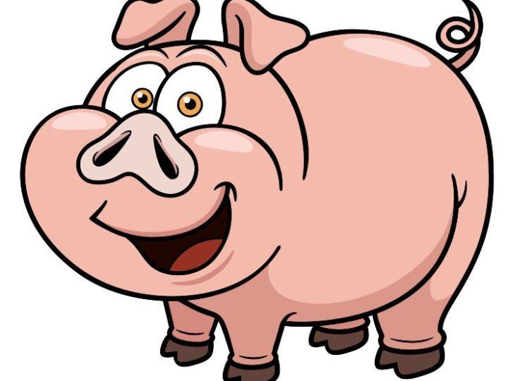 Cosa strana, ma il maiale si ammazza solo con l'autorizzazione del sindaco