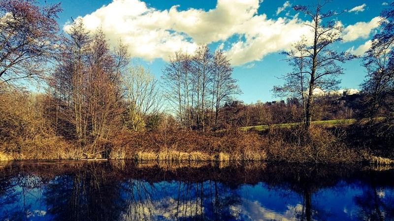 Foto / Il laghetto della Colla a due passi da Via Vialardi