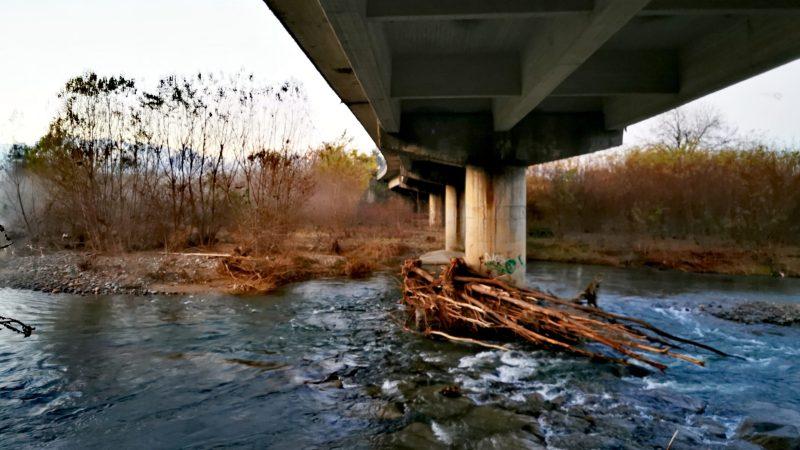 FotoNotizia / Sul greto, sotto il ponte sull'Elvo dopo la piena della scorsa settimana