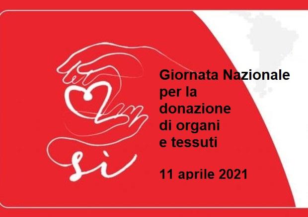 Oggi è la giornata nazionale per la donazione di organi e tessuti