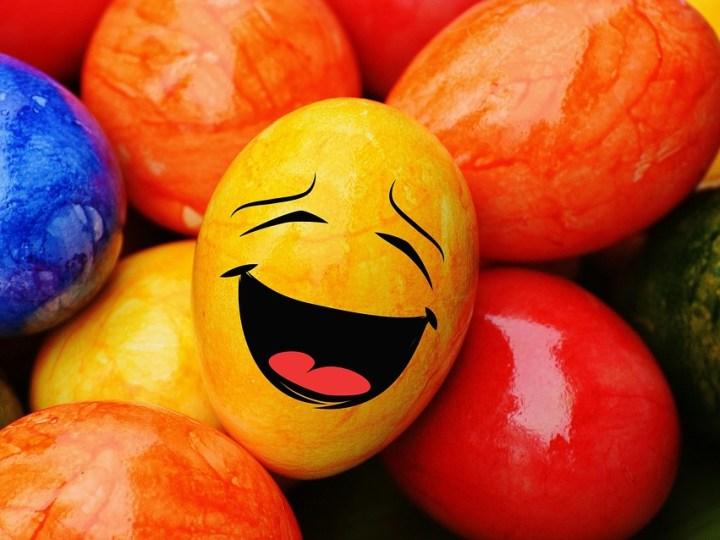 Content come na Pasqua Contento come una Pasqua