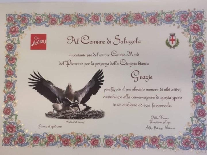 Il Comune di Salussola riceve attestato di riconoscimento per la presenza delle cicogne