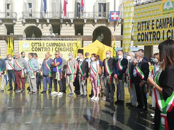 Si allarga, da Salussola a Torino, la protesta anti cinghiali