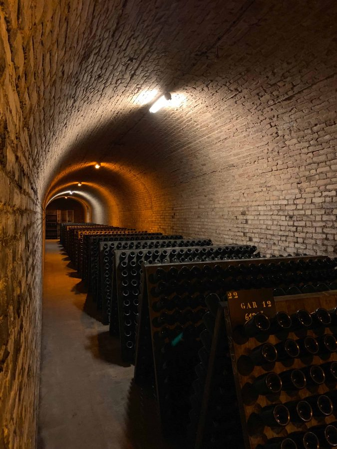 take a train from paris to champagne - all champagne tours are including a visit to the cellars