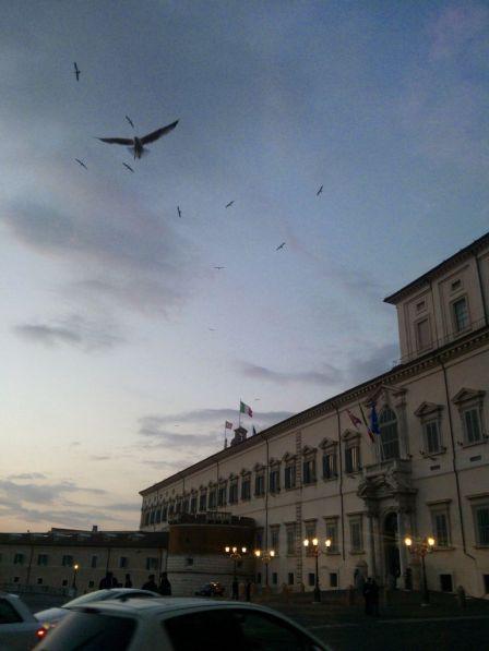 Elezione Napolitano Record Store Day