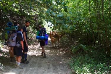 route_clan_sarajevo_2013-072