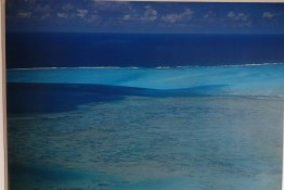 Mostra Mauritius 2