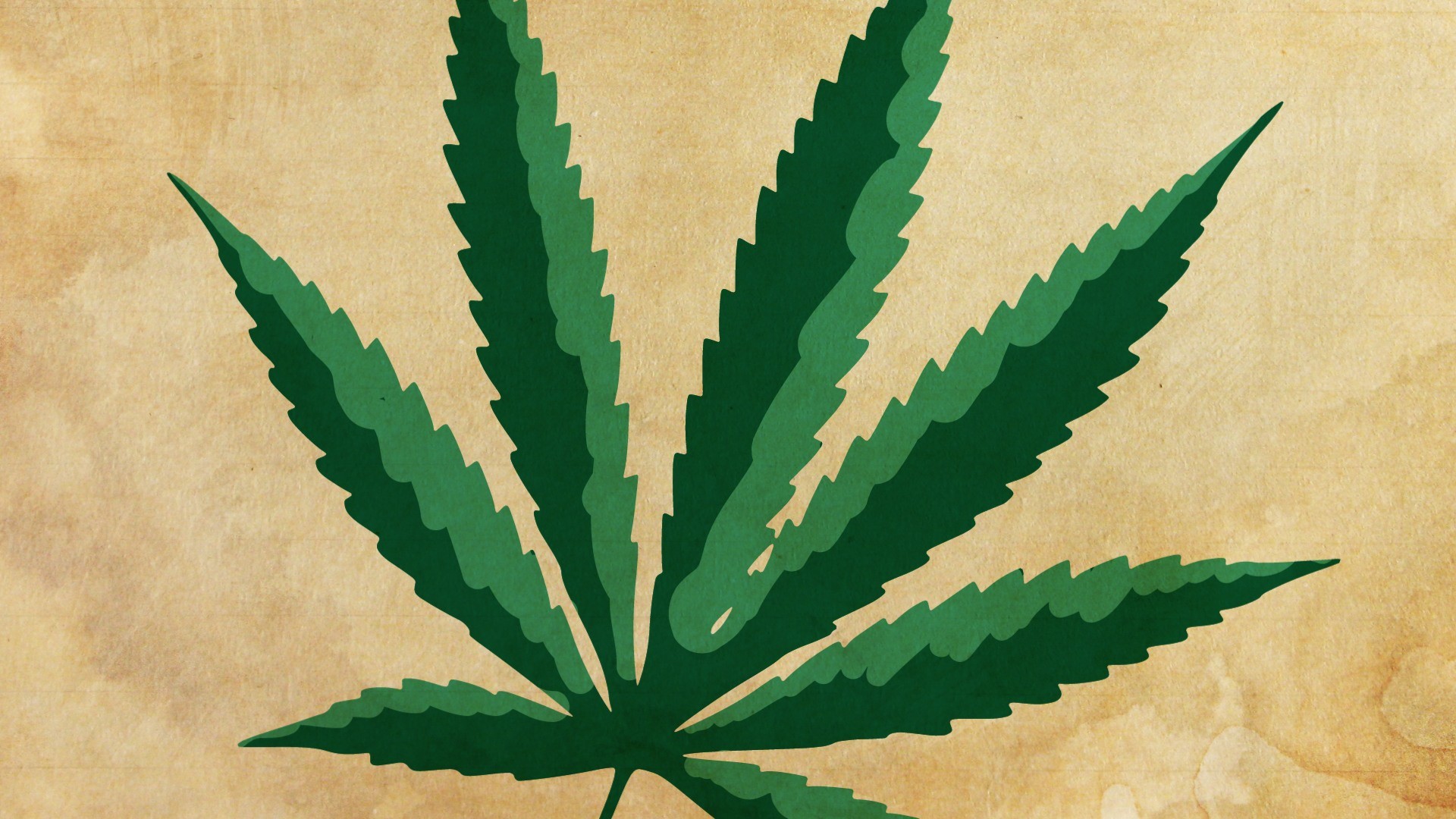 La coltivazione e la detenzione della cannabis è lecita? Una nuova lettura della normativa vigente