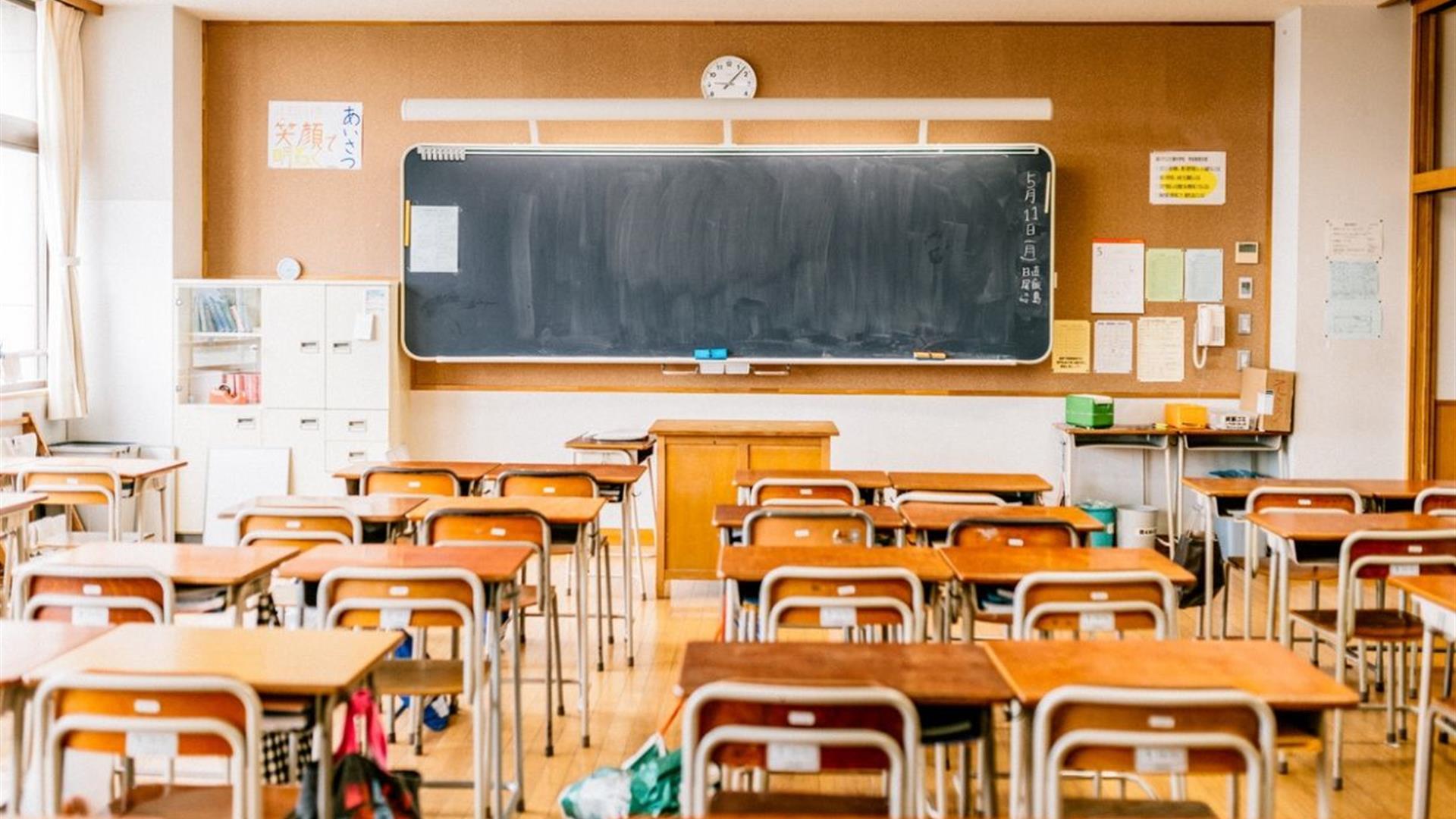 Diritto all'istruzione e Covid-19: spunti costituzionali