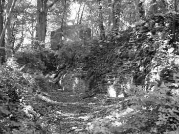 Überreste der Lauensteiner Burg (Foto: Pülm, Juni 2005)