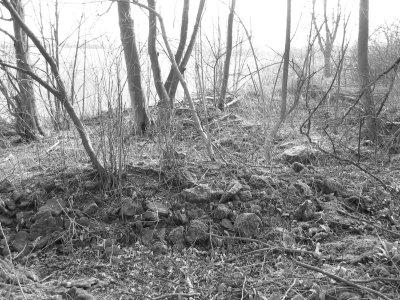 Bauschutt und Glasscherben verdecken  die alten germanischen Grabstätten, 2007