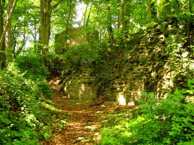 Reste alter Mauern auf dem Burgberg (Foto: Pülm, Juni 2005)