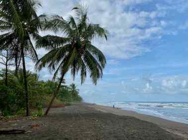 2020-02-03-karibikküste-costa-rica-bb