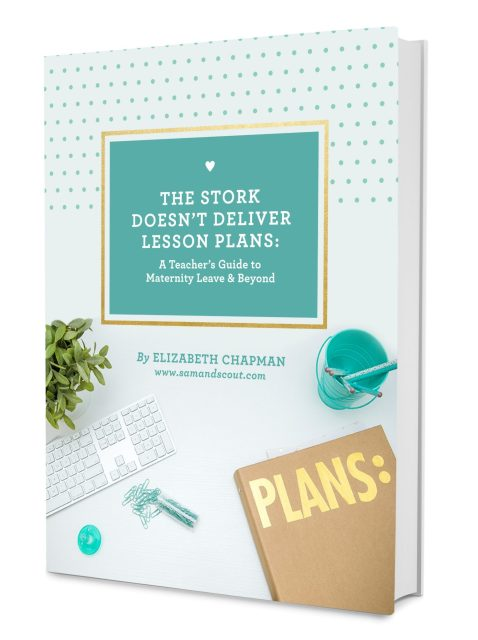 The Stork Doesn't Deliver Lesson Plans