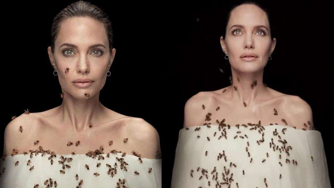 Save The Planet. Angelina Jolie Tackles The Bee Issue Head On.