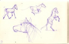 sketch of horses in purple ballppoint