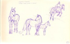 sketch of horses, running, mare and baby