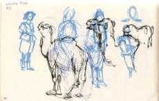 sketch of a camel