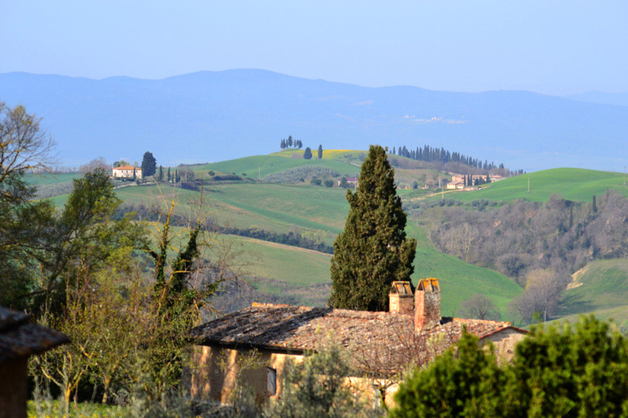 Borgo Lucignanello Bandini vistas