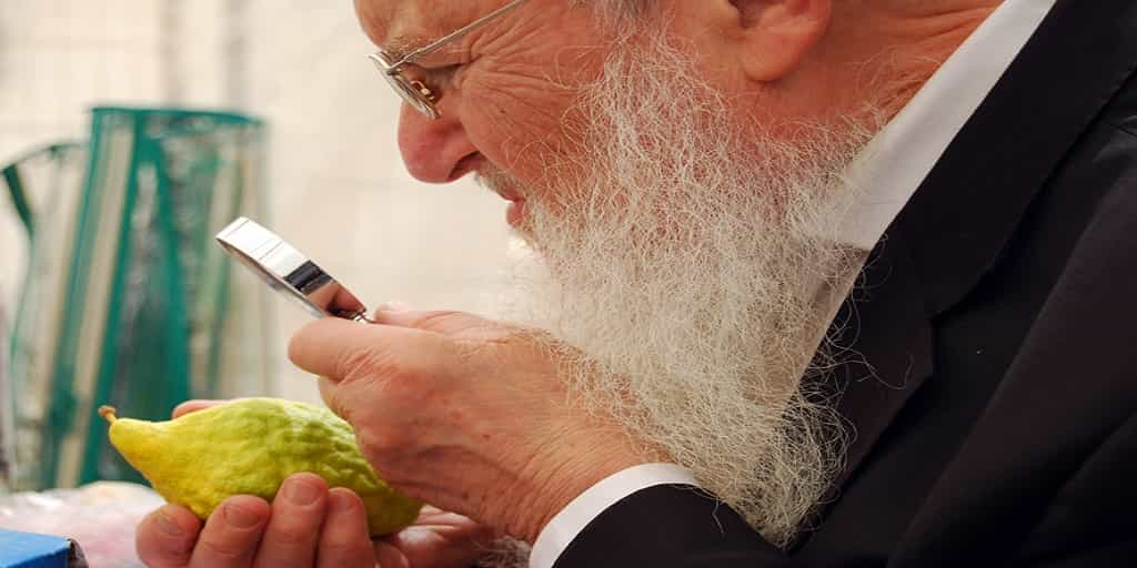 What is Sukkot 2018 All About?