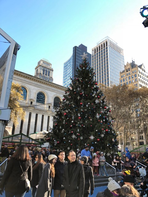 Christmas Tree in Bryant Park in NYC