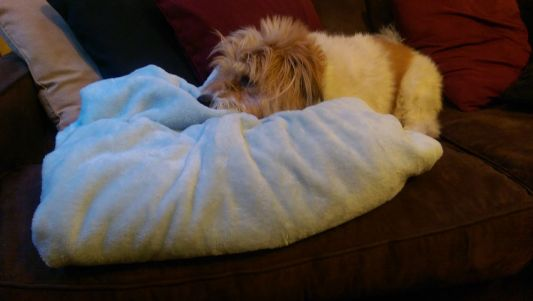 Annie with the blue blanket.