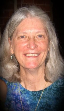 Anne O'Brien Carelli, author of middle-grade novel SKYLARK AND WALLCREEPER