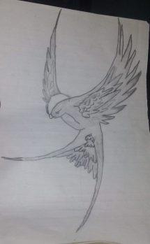 pencil drawing - art starts